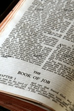 Job bible