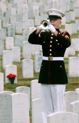 TAPS for 9/11: Life after Death | Edhird's Blog